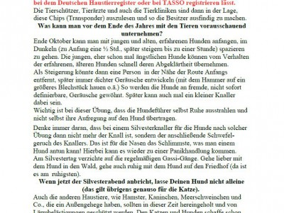 161218-tiere-und-sylvester