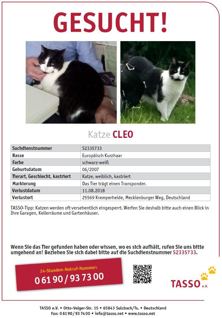 Cleo vermisst