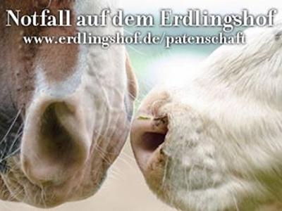 vs-notfall-erdlingshof