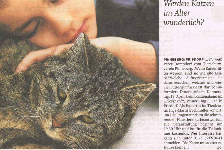 2012-04-19 Pressebericht Katzen im Alter
